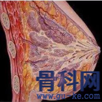 乳腺增生,乳房疼痛、肿块、溢液