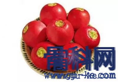 治疗痛风的食物有哪些,雌性红萝卜可以治疗?