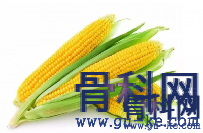 玉米须搭配什么对治疗痛风更好?