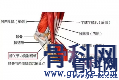 有什么办法可以应对膝盖痛、腿无力?