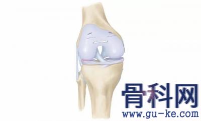 什么是膝关节的三层保险?年纪大了,为何很多人的膝关节会疼痛?