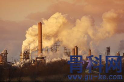 空气污染导致骨矿物质含量降低