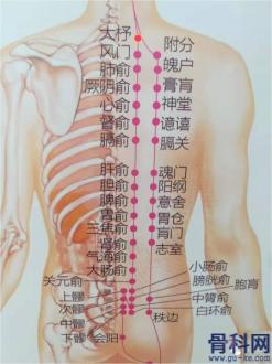 大杼穴的准确位置图片作用与功效:强筋骨,清邪热治疗颈项僵硬,肩背痛