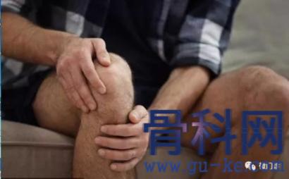 木瓜治疗膝盖疼痛,缓解膝盖咔咔响、冷痛
